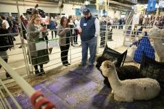 Senator Lindsey M. Williams and staff attend the 2020 Pennsylvania Farm Show.