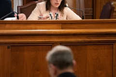 Senator Lindsey M. Williams attends the Department of Community and Economic Development Budget Appropriations Hearing