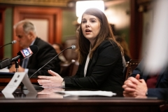 March 26, 2019: Senator Lindsey Williams participates in a joint Senate-House hearing in Harrisburg on legislation aimed at making college more affordable.