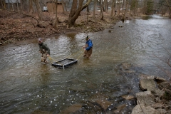 March 6, 2020: Senator Lindsey Williams joins the PA Fish and Boat Commission to stock Deer Creek with rainbow and golden trout.