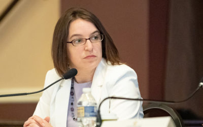 Senator Lindsey M. Williams Appointed to Bipartisan Election Integrity and Reform Committee; Issues Statement Following First Hearing