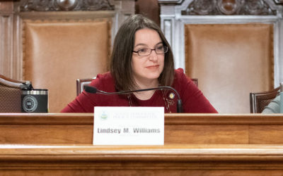 Senator Lindsey Williams Supports Audit of DCED Waiver Program; Denounces Senate Republican Political Theater