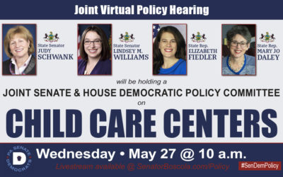 Senator Lindsey Williams to Co-Host Policy Hearing on Child Care Issues Facing Providers and Working Families During COVID-19 Crisis
