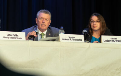 Senator Lindsey M. Williams Releases Statement on Senate Republicans' Refusal to Seat Senator-Elect Jim Brewster